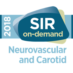 2018 The Stroke Course On-demand